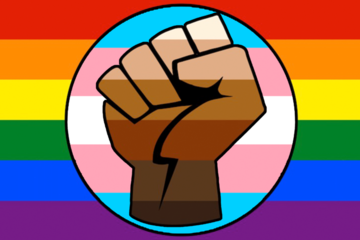 LGBTQ, trans and Black Life Matters intersectional flag. A raised fist striated in multiple skin shades is at the center of a circle in pink, white, and blue, striations, trans pride colors. The circle is at the center of a queer pride flag.